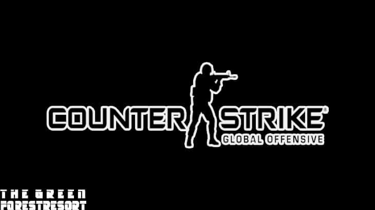 5. Counter-Strike Global Offensive