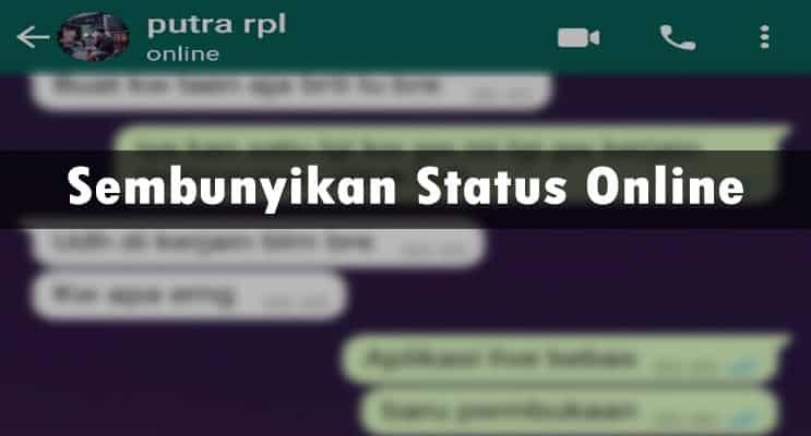 Sembunyikan Status Online