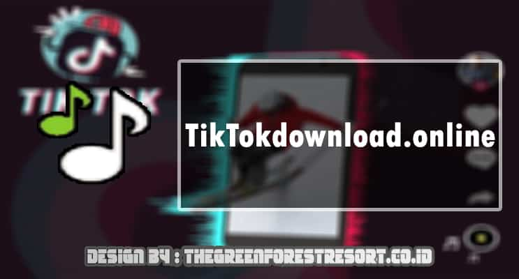 TikTokdownload online