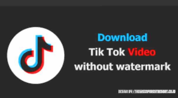 Video Downloader For Tiktok